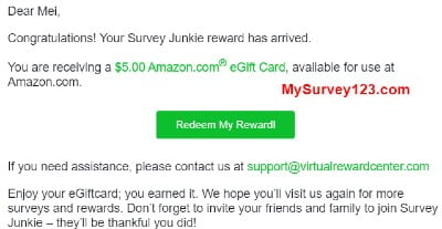 Survey Junkie Survey Reward Payment - Amazon Gift card received almost instantly!